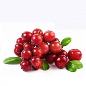 Wild-Cranberry-Vaccinium-Macrocarpon-Bearberry-Fruit-Seeds-Professional-Pack-50-Seeds-Pack-Tasty-Great-Garden-Plant-jpg-640x640-105