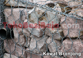 Kawat-Bronjong1